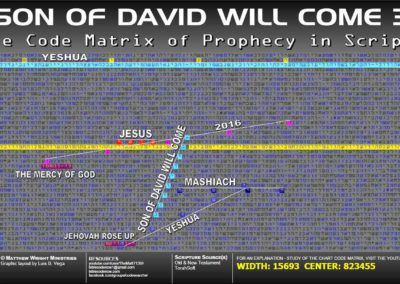 son_of_david_will_come_3