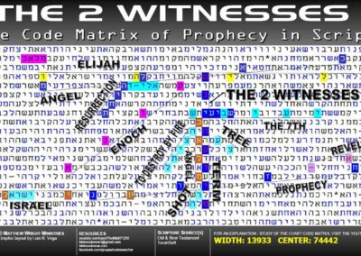 the_2_witnesses_1