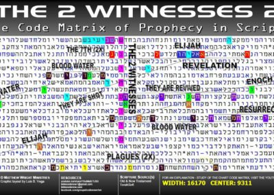 the_2_witnesses_2